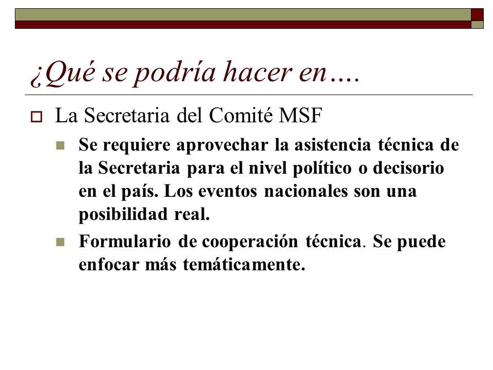¿Qué se podría hacer en…. La Secretaria del Comité MSF Se requiere aprovechar la asistencia técnica de la Secretaria para el nivel político o decisori