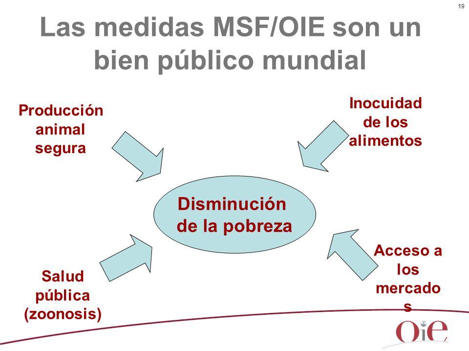 19 Las medidas MSF/OIE son un bien público mundial Disminución de la pobreza Producción animal segura Acceso a los mercado s Salud pública (zoonosis)