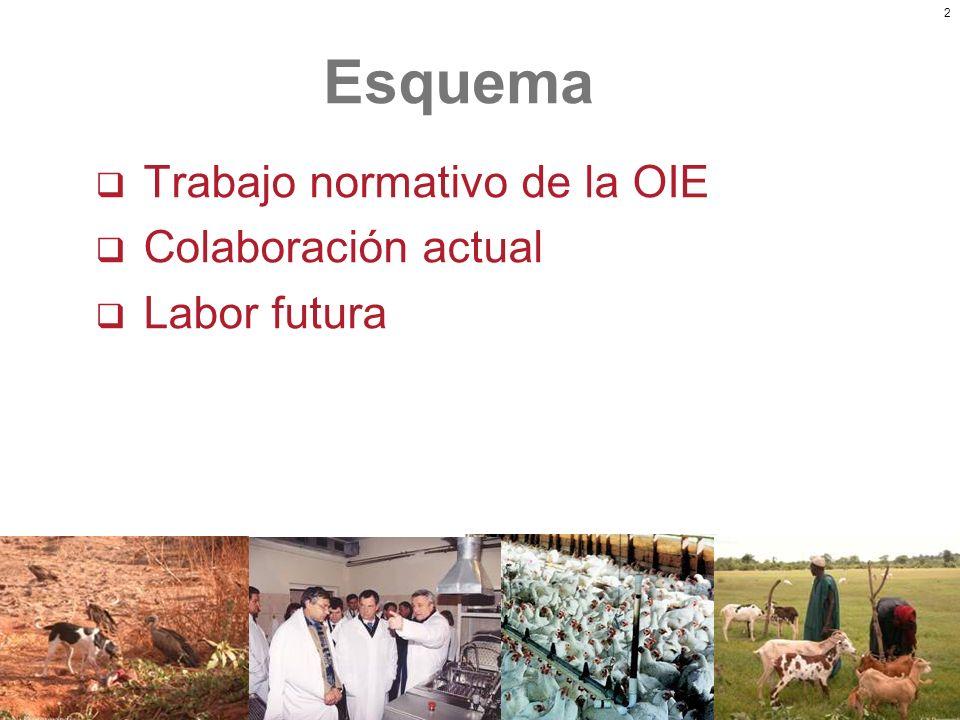 2 Trabajo normativo de la OIE Colaboración actual Labor futura Esquema