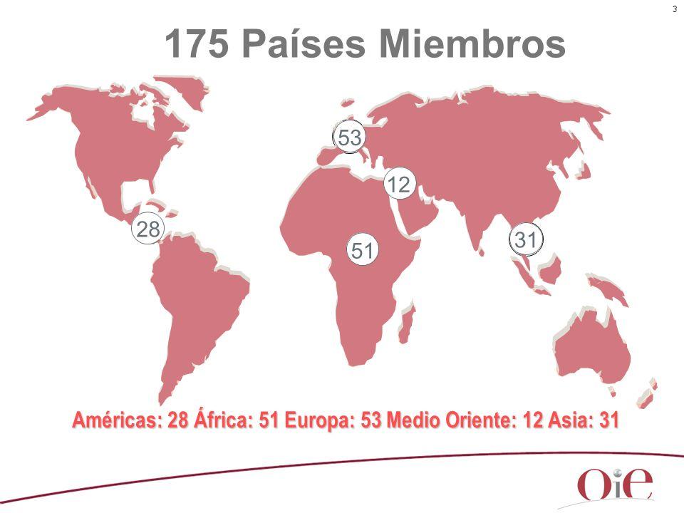 3 175 Países Miembros Américas: 28 África: 51 Europa: 53 Medio Oriente: 12 Asia: 31 30 52 28 51 53 12 31