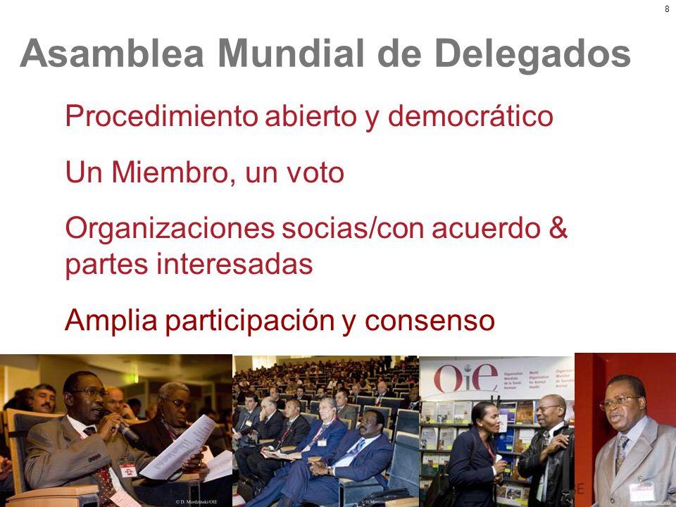 8 Asamblea Mundial de Delegados Procedimiento abierto y democrático Un Miembro, un voto Organizaciones socias/con acuerdo & partes interesadas Amplia