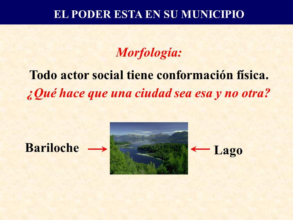 Morfología: Todo actor social tiene conformación física.