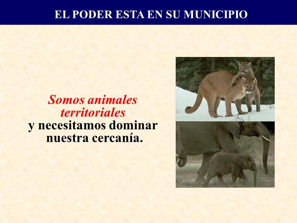 Somos animales territoriales y necesitamos dominar nuestra cercanía. EL PODER ESTA EN SU MUNICIPIO