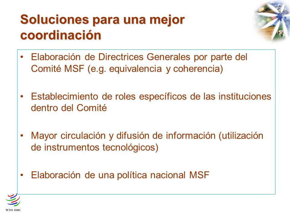 Soluciones para una mejor coordinación Elaboración de Directrices Generales por parte del Comité MSF (e.g. equivalencia y coherencia) Establecimiento