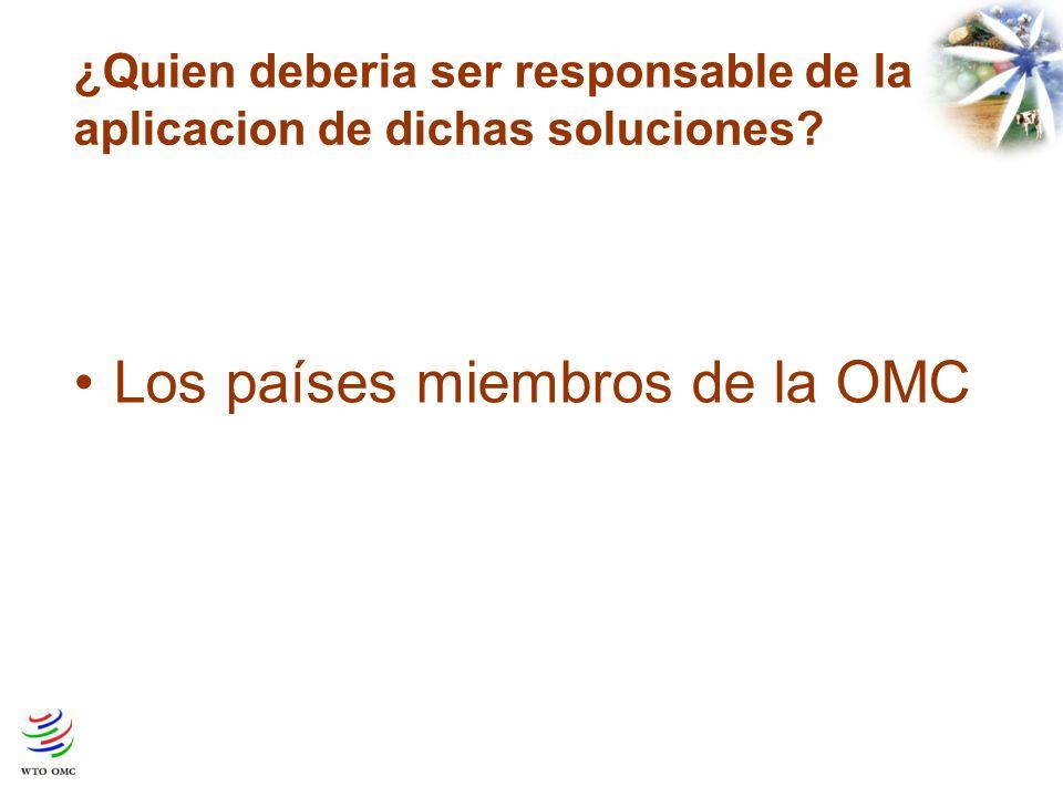 ¿Quien deberia ser responsable de la aplicacion de dichas soluciones Los países miembros de la OMC
