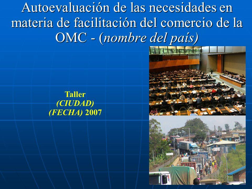 Autoevaluación de las necesidades en materia de facilitación del comercio de la OMC - (nombre del país) Taller (CIUDAD) (FECHA) 2007
