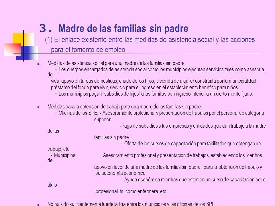 Madre de las familias sin padre (1) El enlace existente entre las medidas de asistencia social y las acciones para el fomento de empleo Medidas de asi