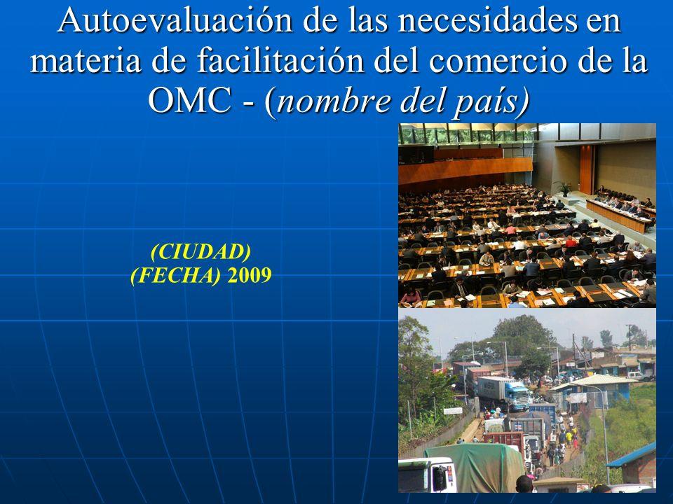 Autoevaluación de las necesidades en materia de facilitación del comercio de la OMC - (nombre del país) (CIUDAD) (FECHA) 2009