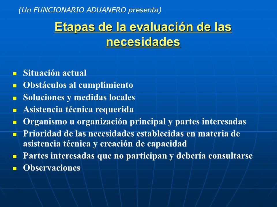 Etapas de la evaluación de las necesidades Situación actual Obstáculos al cumplimiento Soluciones y medidas locales Asistencia técnica requerida Organ