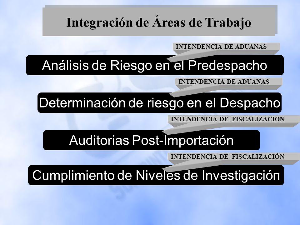 Integración de Áreas de Trabajo Determinación de riesgo en el DespachoAuditorias Post-ImportaciónCumplimiento de Niveles de InvestigaciónAnálisis de R
