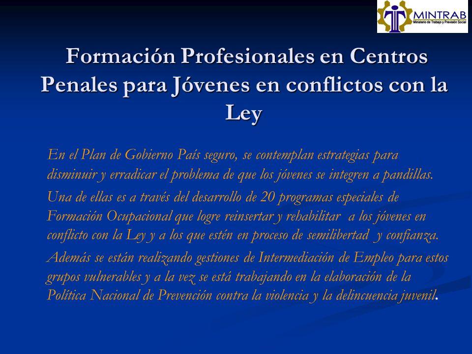 Formación Profesionales en Centros Penales para Jóvenes en conflictos con la Ley Formación Profesionales en Centros Penales para Jóvenes en conflictos