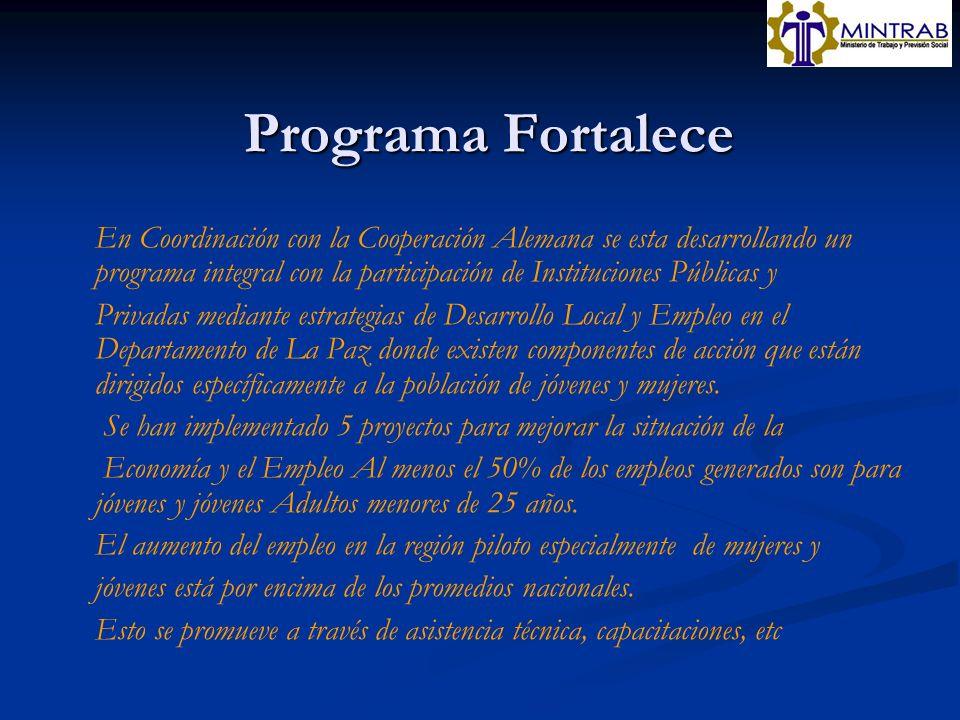 Programa Fortalece En Coordinación con la Cooperación Alemana se esta desarrollando un programa integral con la participación de Instituciones Pública