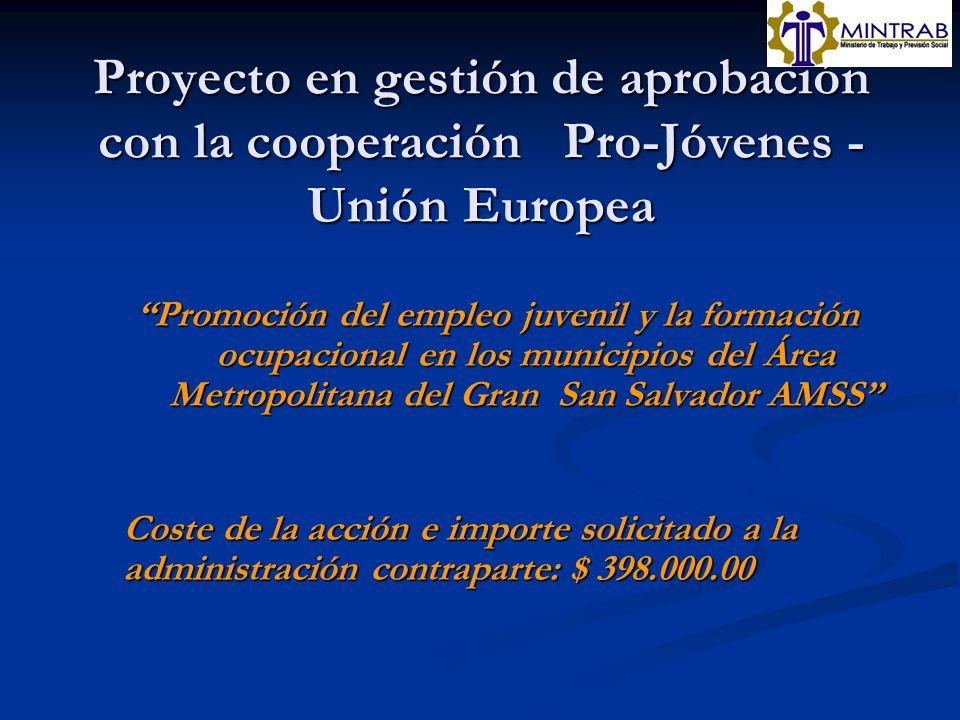 Proyecto en gestión de aprobación con la cooperación Pro-Jóvenes - Unión Europea Promoción del empleo juvenil y la formación ocupacional en los munici