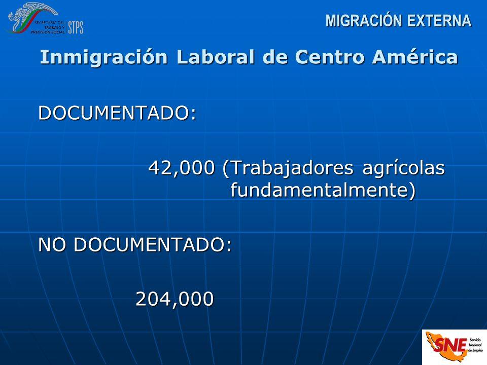 DOCUMENTADO: 42,000 (Trabajadores agrícolas fundamentalmente) 42,000 (Trabajadores agrícolas fundamentalmente) NO DOCUMENTADO: 204,000 MIGRACIÓN EXTER