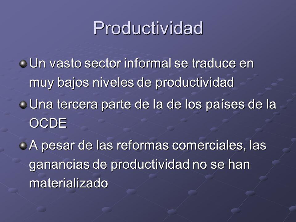 Productividad Un vasto sector informal se traduce en muy bajos niveles de productividad Una tercera parte de la de los países de la OCDE A pesar de las reformas comerciales, las ganancias de productividad no se han materializado
