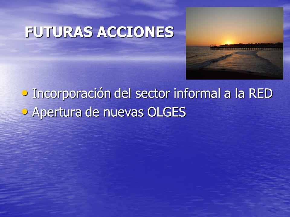 FUTURAS ACCIONES Incorporación del sector informal a la RED Incorporación del sector informal a la RED Apertura de nuevas OLGES Apertura de nuevas OLGES