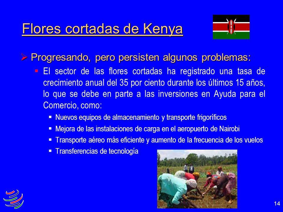14 Flores cortadas de Kenya Progresando, pero persisten algunos problemas: Progresando, pero persisten algunos problemas: El sector de las flores cort
