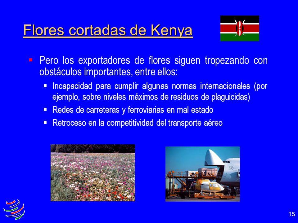 15 Flores cortadas de Kenya Pero los exportadores de flores siguen tropezando con obstáculos importantes, entre ellos: Incapacidad para cumplir alguna
