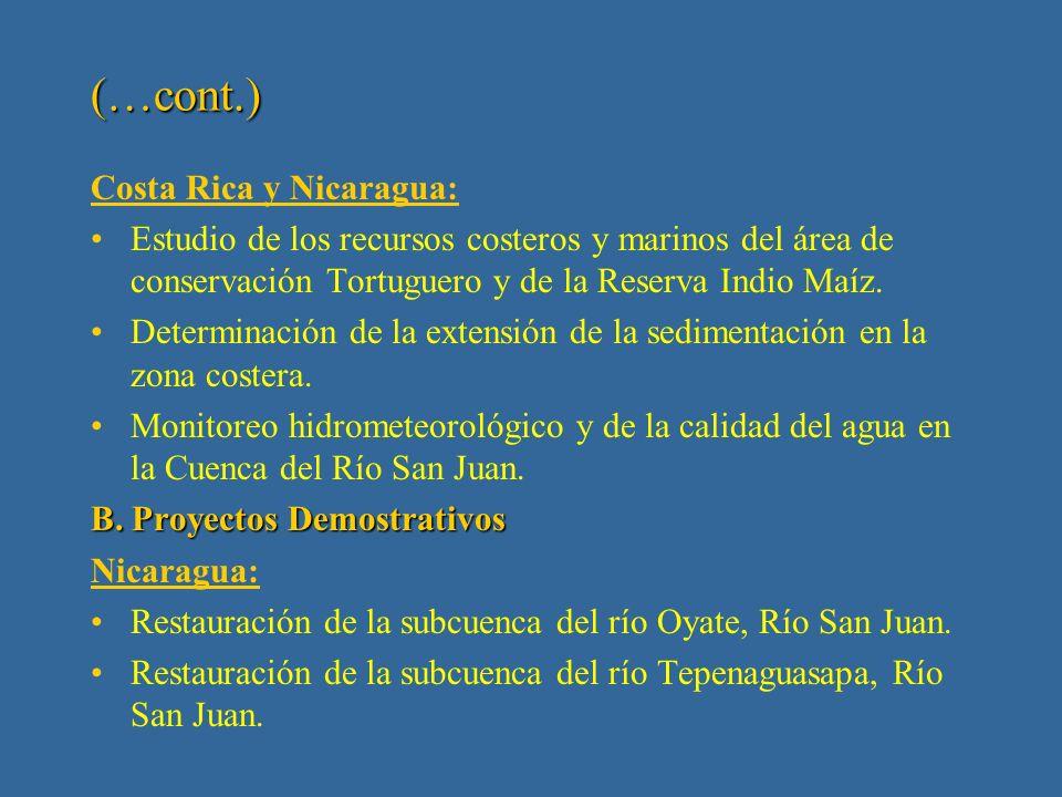 II Fase: 2001 - 2003 Estudios Básicos y Proyectos Demostrativos A.