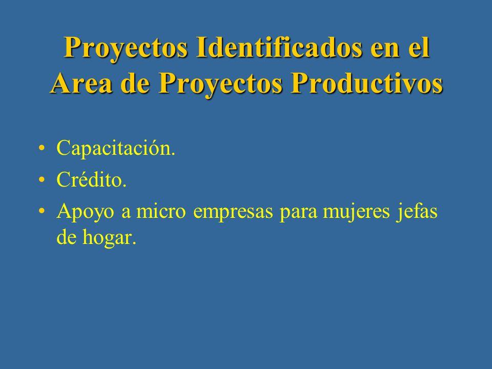 Proyectos Identificados en el Area de Infraestructura Vial Reparación de caminos vecinales.