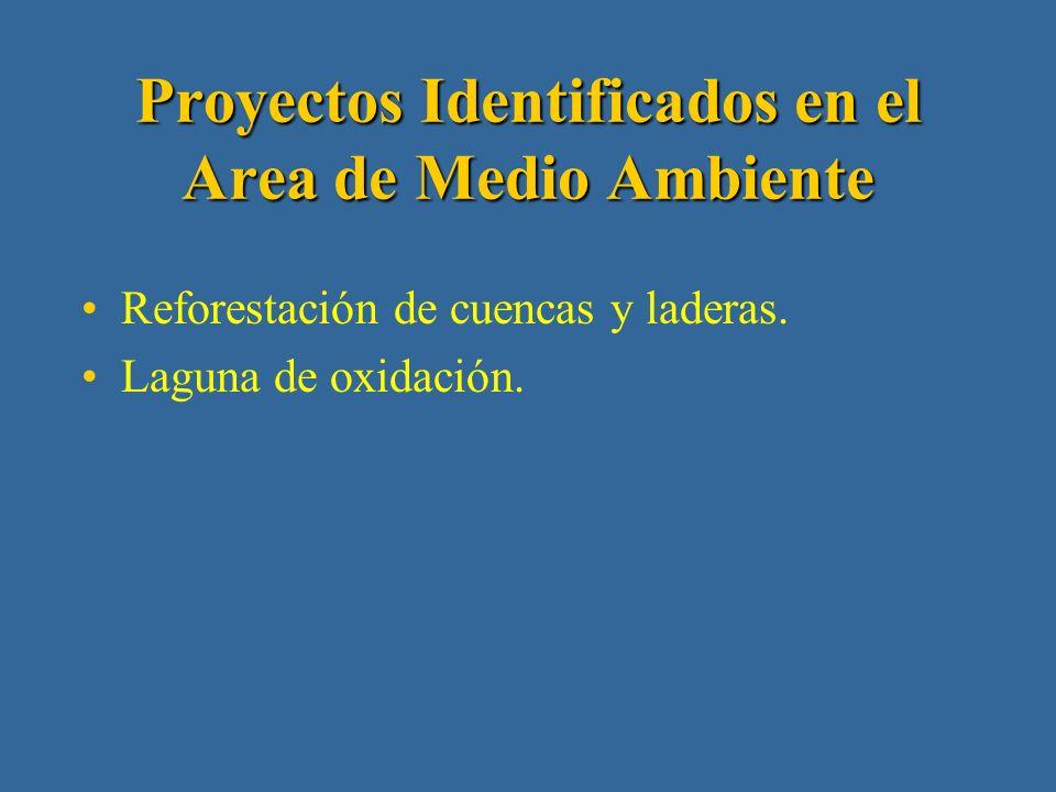 Proyectos Identificados en el Area de Proyectos Productivos Capacitación.