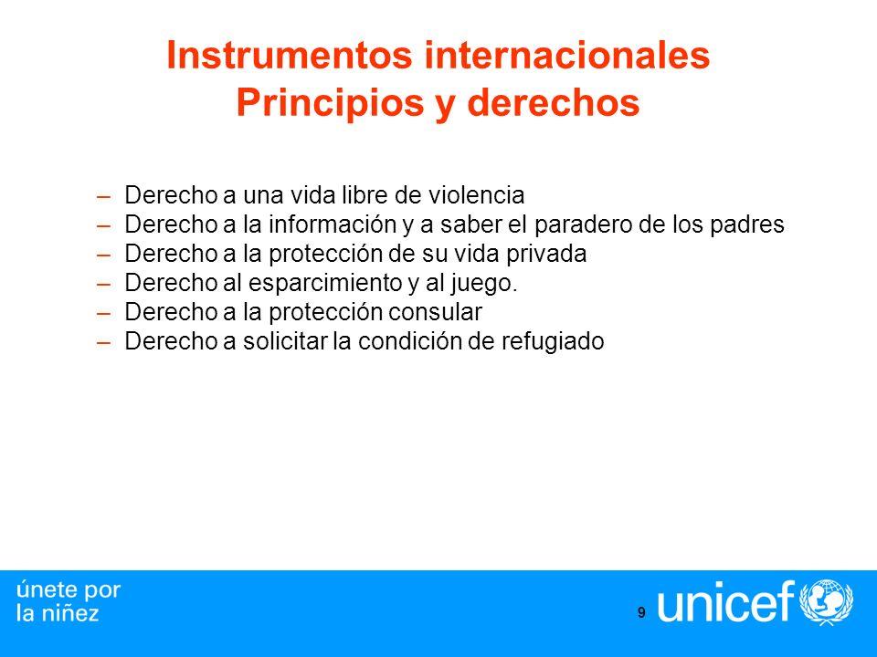 9 Instrumentos internacionales Principios y derechos –Derecho a una vida libre de violencia –Derecho a la información y a saber el paradero de los pad