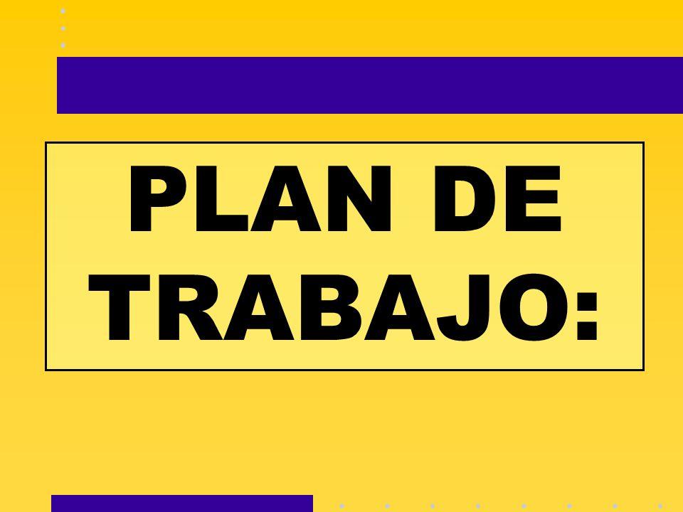 PLAN DE TRABAJO: