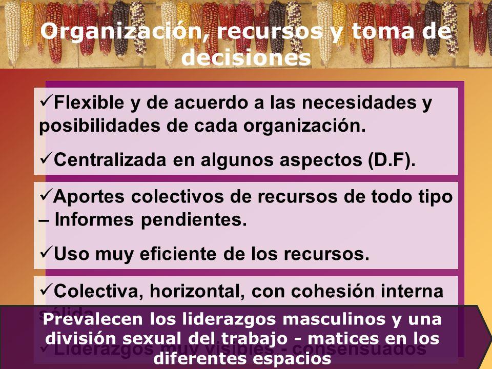 Organización, recursos y toma de decisiones Flexible y de acuerdo a las necesidades y posibilidades de cada organización. Centralizada en algunos aspe