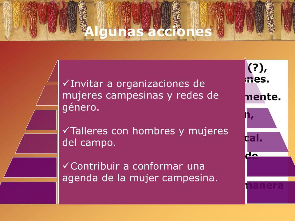 Algunas acciones Referendum: agregar las firmas (?), definir contenido, combinar acciones. Feria del Maíz: instituirla anualmente. Reforzar informació