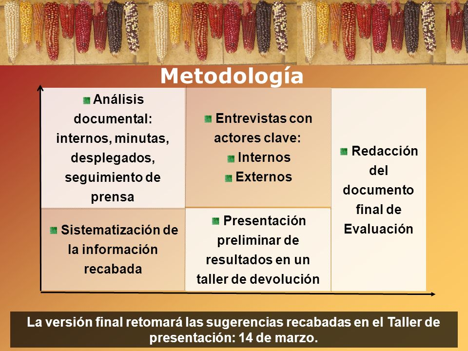 Metodología Análisis documental: internos, minutas, desplegados, seguimiento de prensa Entrevistas con actores clave: Internos Externos Sistematizació