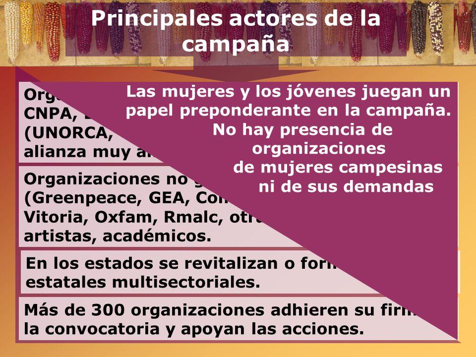 Principales actores de la campaña Organizaciones no gubernamentales (Greenpeace, GEA, Comercio Justo, I. Maya, F. Vitoria, Oxfam, Rmalc, otras), perso