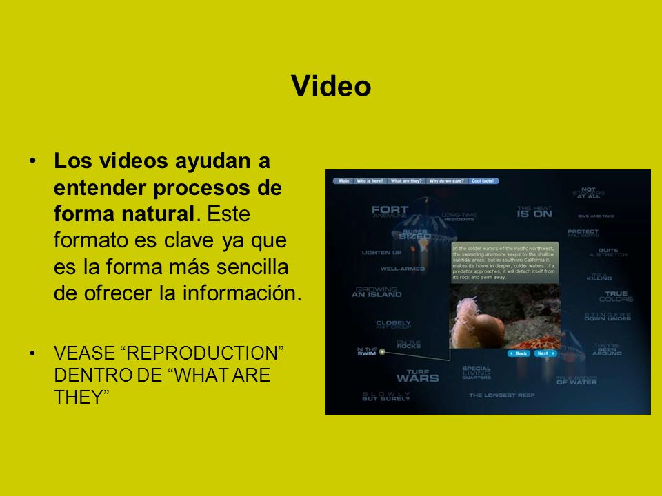 Video Los videos ayudan a entender procesos de forma natural.