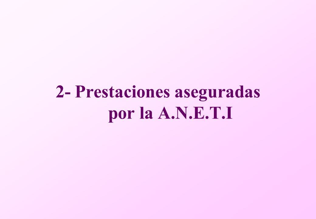 2- Prestaciones aseguradas por la A.N.E.T.I