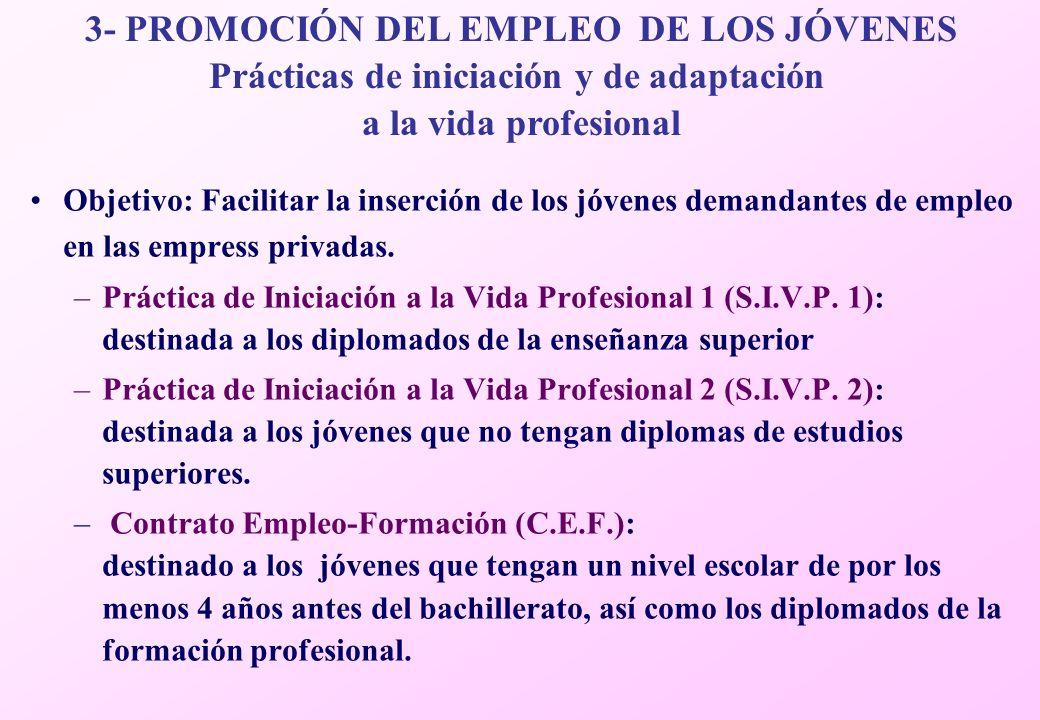 Objetivo: Facilitar la inserción de los jóvenes demandantes de empleo en las empress privadas.