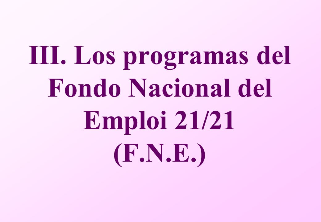 III. Los programas del Fondo Nacional del Emploi 21/21 (F.N.E.)