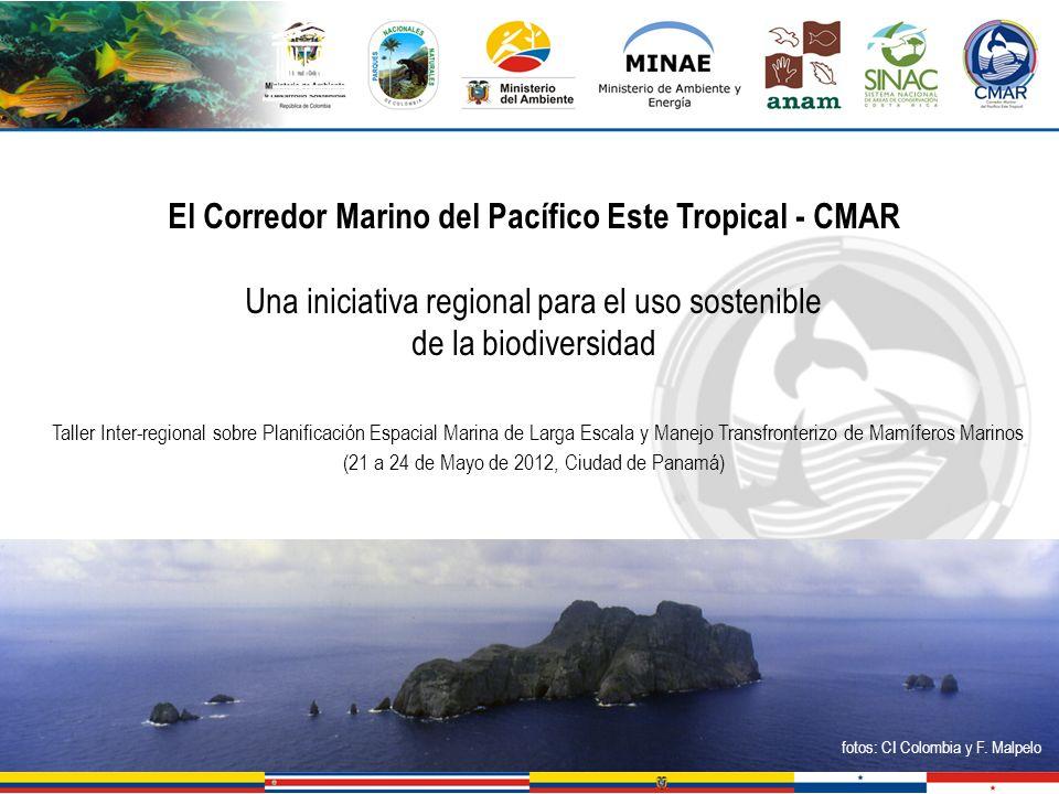 El Corredor Marino del Pacífico Este Tropical - CMAR Una iniciativa regional para el uso sostenible de la biodiversidad Taller Inter-regional sobre Pl