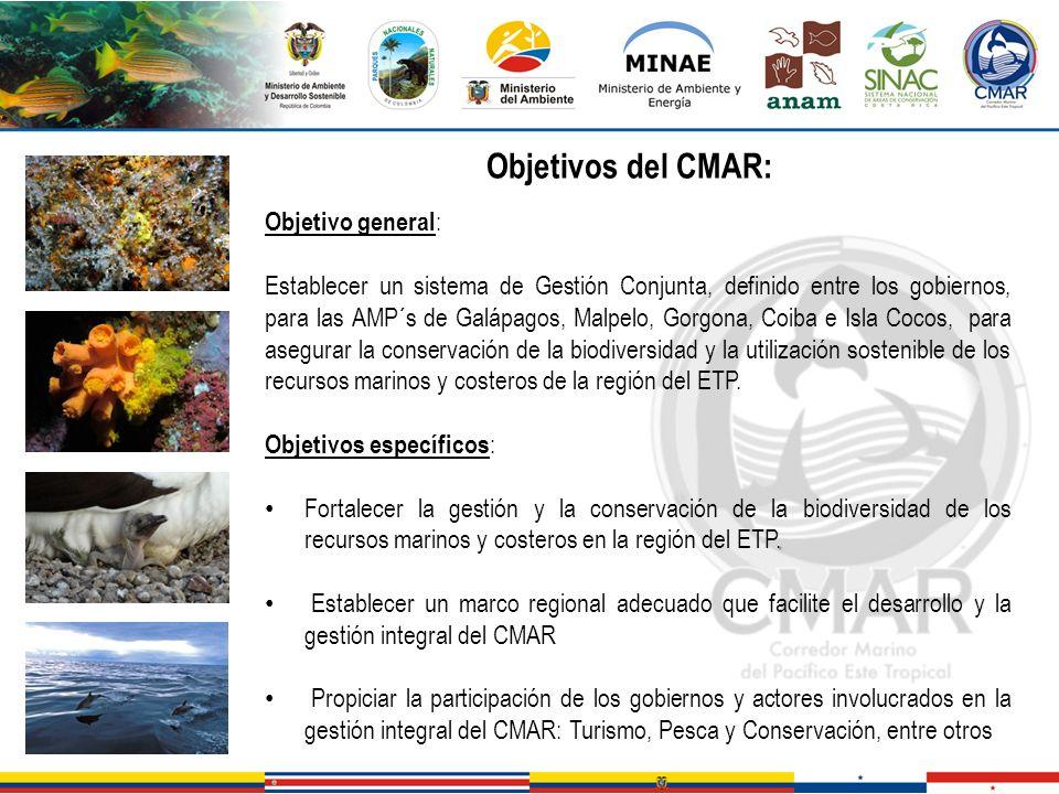 Objetivo general : Establecer un sistema de Gestión Conjunta, definido entre los gobiernos, para las AMP´s de Galápagos, Malpelo, Gorgona, Coiba e Isl