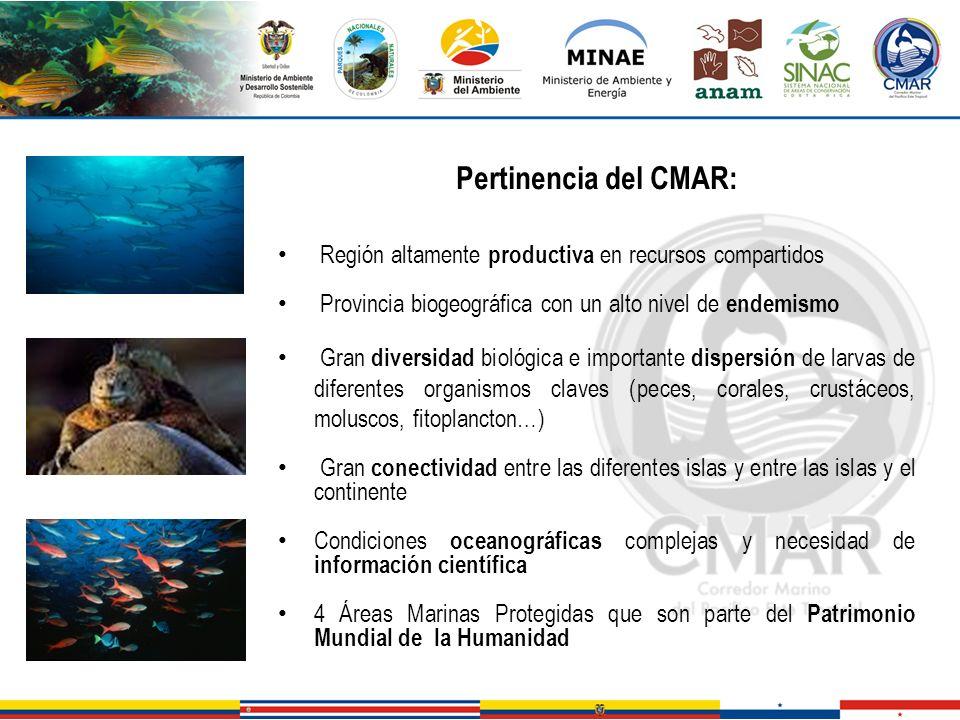Pertinencia del CMAR: Región altamente productiva en recursos compartidos Provincia biogeográfica con un alto nivel de endemismo Gran diversidad bioló