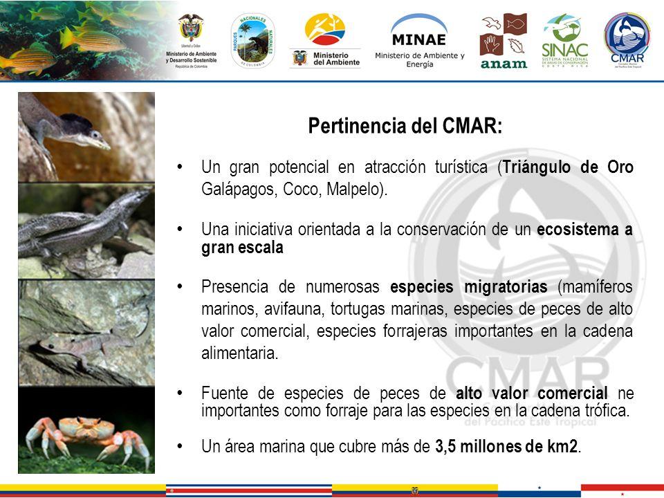 Pertinencia del CMAR: Un gran potencial en atracción turística ( Triángulo de Oro Galápagos, Coco, Malpelo). Una iniciativa orientada a la conservació