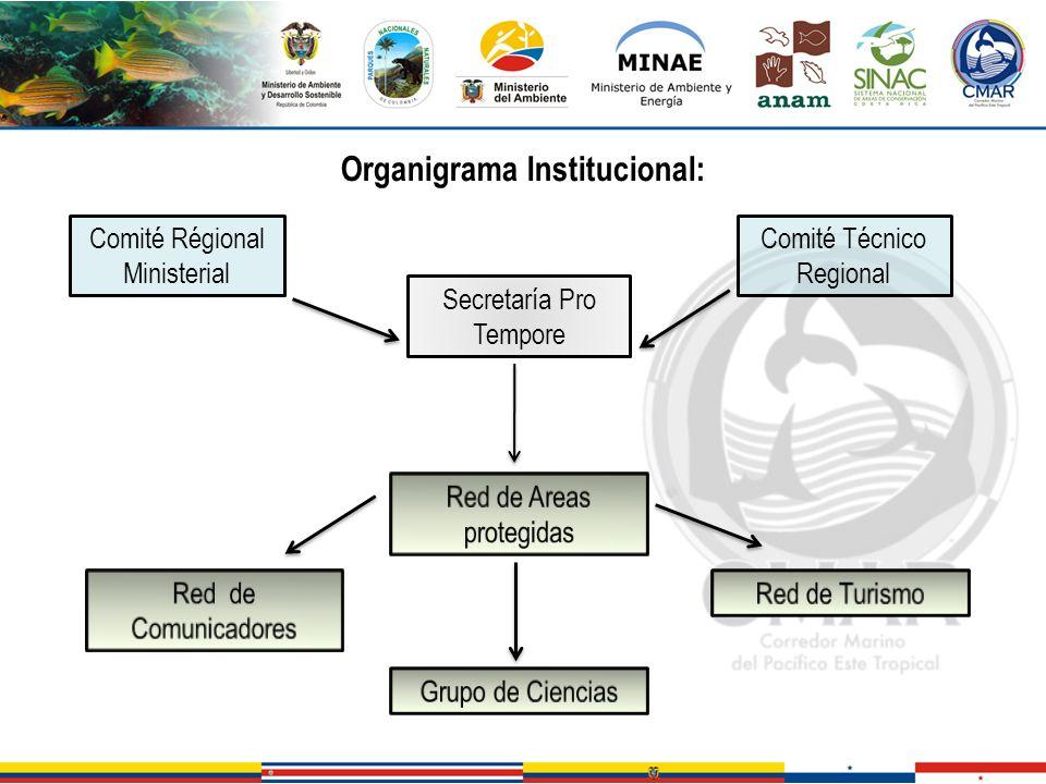 Organigrama Institucional: Comité Régional Ministerial Comité Técnico Regional Secretaría Pro Tempore