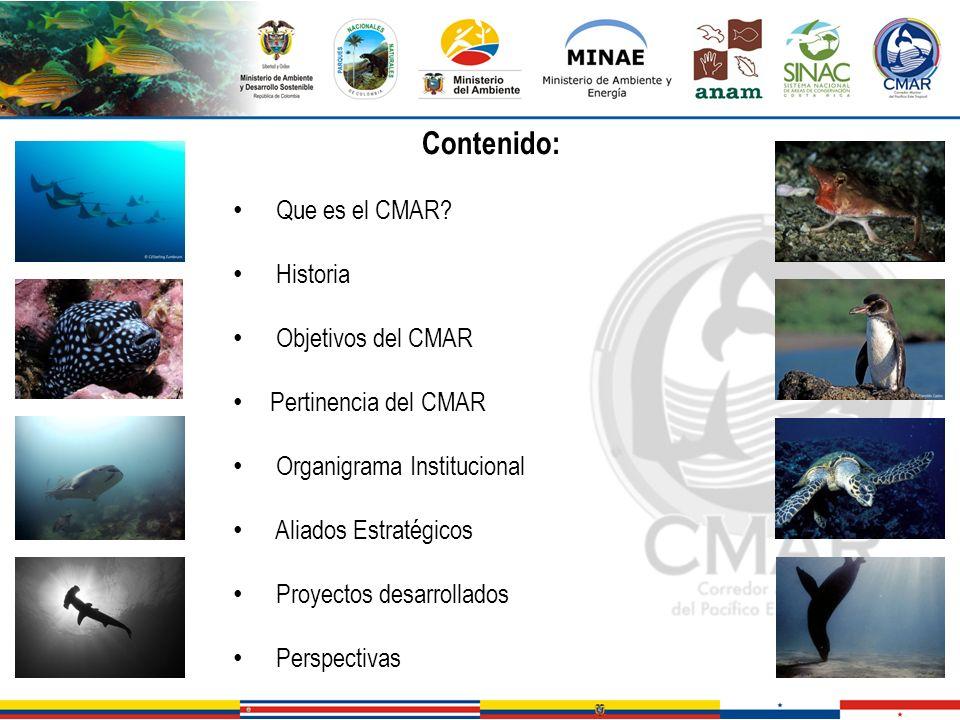 Contenido: Que es el CMAR? Historia Objetivos del CMAR Pertinencia del CMAR Organigrama Institucional Aliados Estratégicos Proyectos desarrollados Per