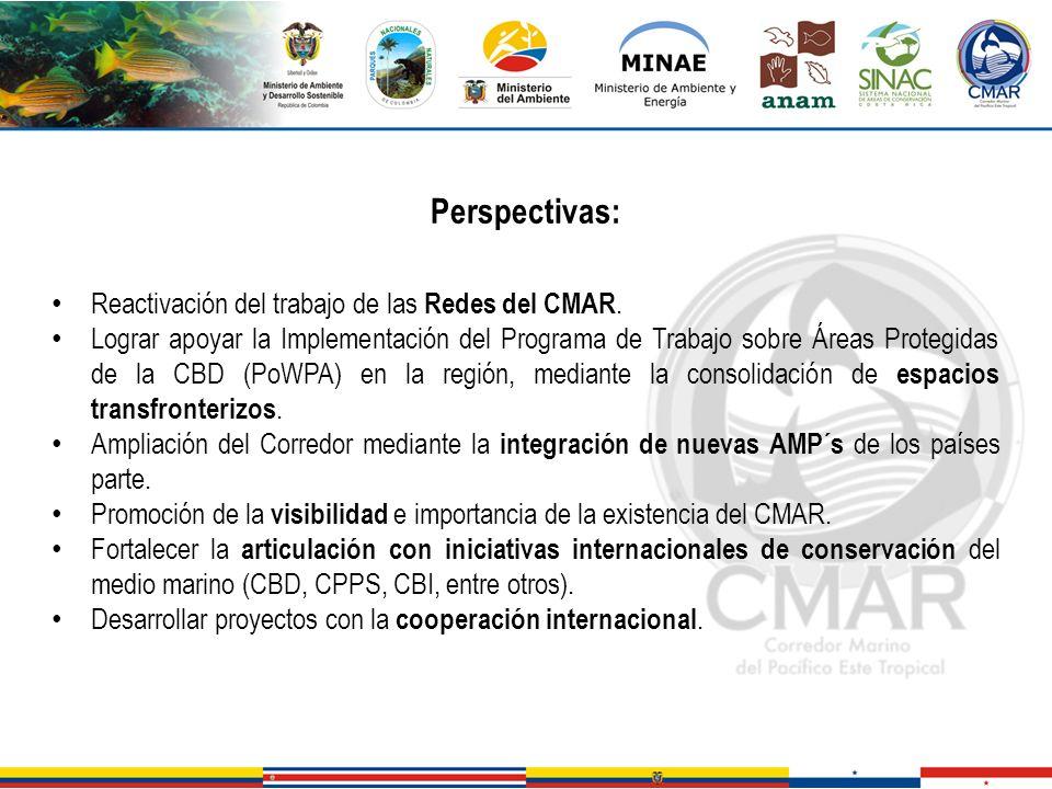 Perspectivas: Reactivación del trabajo de las Redes del CMAR. Lograr apoyar la Implementación del Programa de Trabajo sobre Áreas Protegidas de la CBD