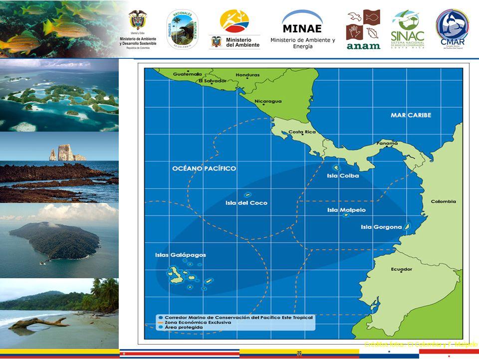 Créditos fotos: CI Colombia y F. Malpelo