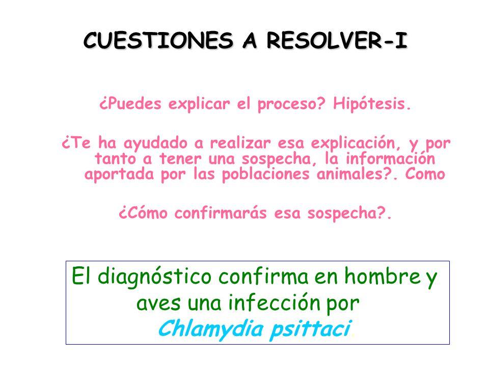 CUESTIONES A RESOLVER-I ¿Puedes explicar el proceso.