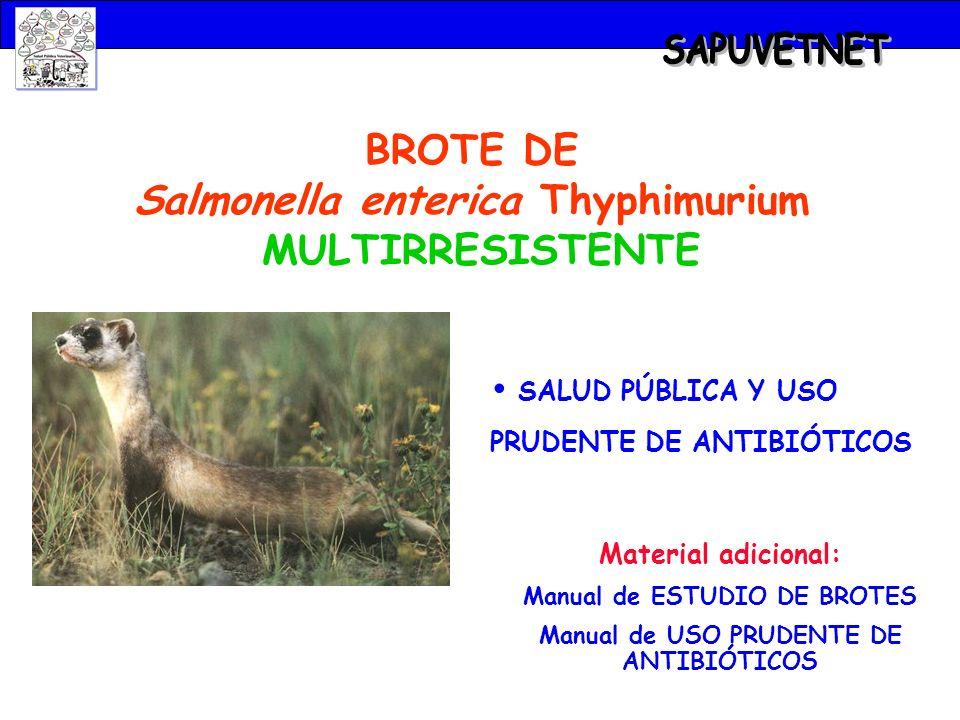 BROTE DE Salmonella enterica Thyphimurium MULTIRRESISTENTE SALUD PÚBLICA Y USO PRUDENTE DE ANTIBIÓTICOS Material adicional: Manual de ESTUDIO DE BROTE