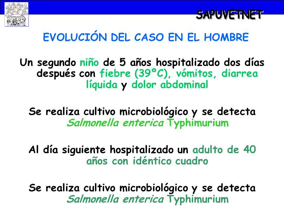 EVOLUCIÓN DEL CASO EN EL HOMBRE Un segundo niño de 5 años hospitalizado dos días después con fiebre (39ºC), vómitos, diarrea líquida y dolor abdominal