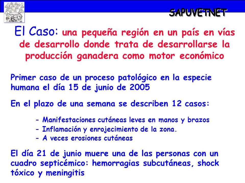El Caso: una pequeña región en un país en vías de desarrollo donde trata de desarrollarse la producción ganadera como motor económico Primer caso de u