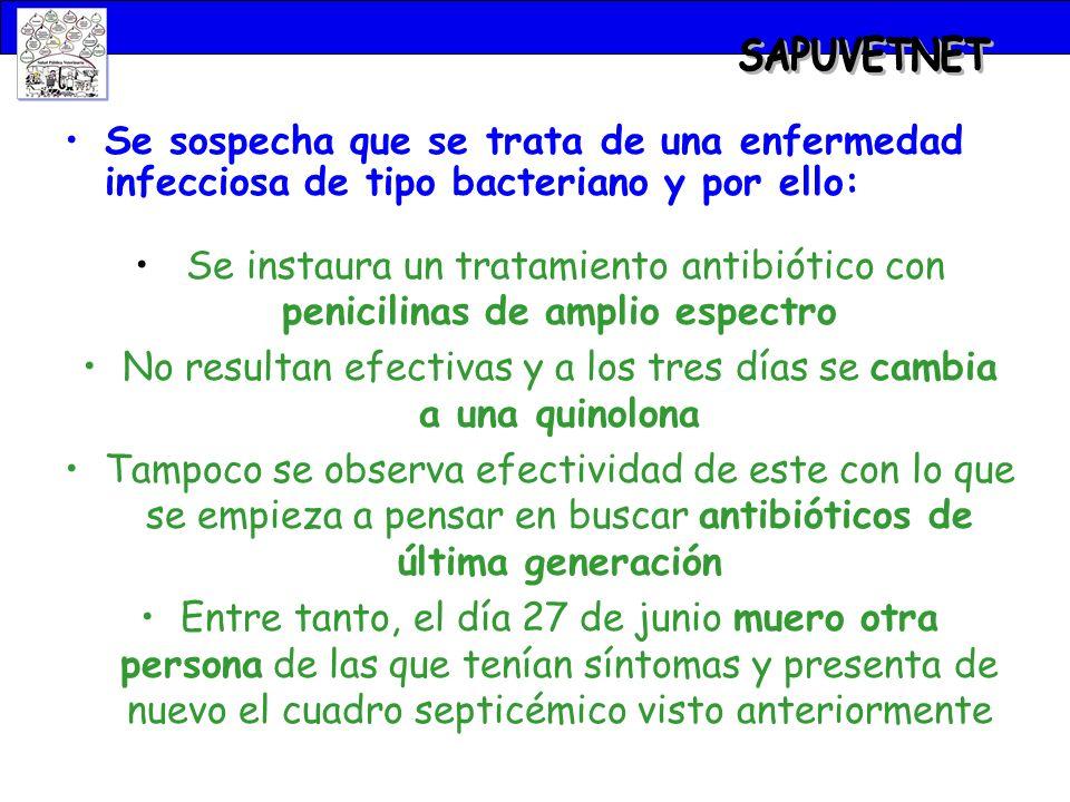 Se sospecha que se trata de una enfermedad infecciosa de tipo bacteriano y por ello: Se instaura un tratamiento antibiótico con penicilinas de amplio