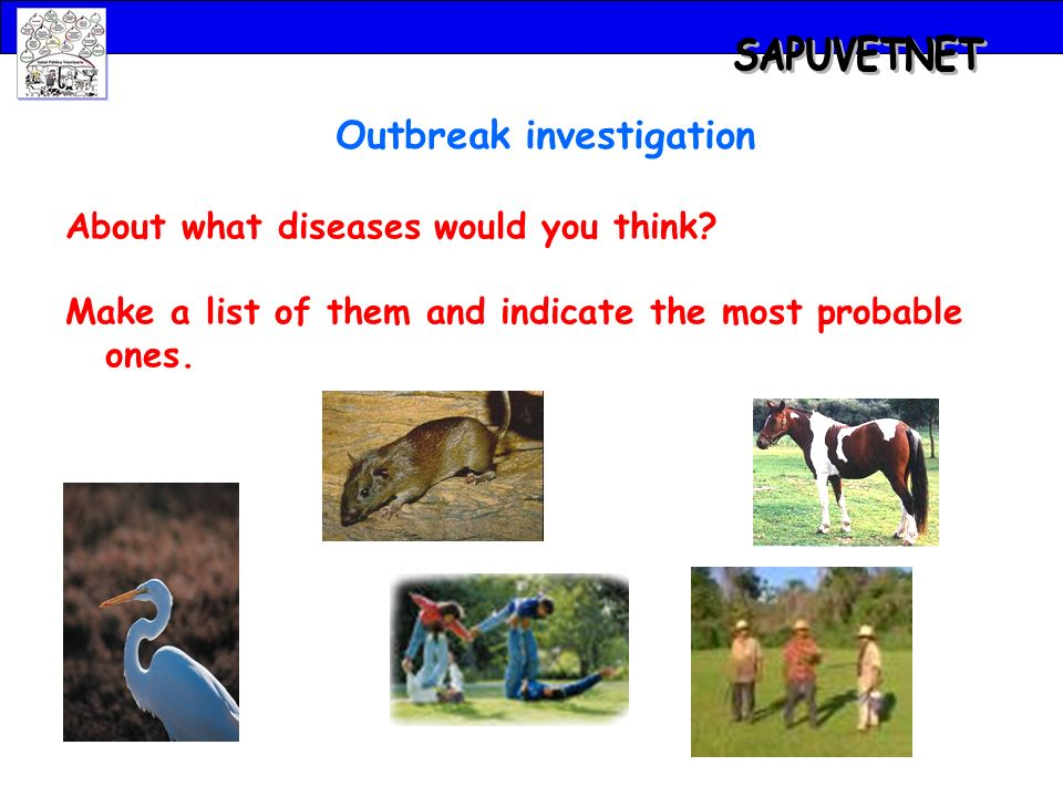Outbreak investigation About what diseases would you think.