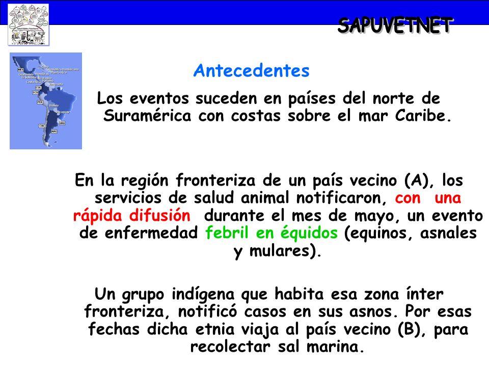 EVOLUCIÓN DE LA EPIDEMIA Hacia fines de julio, las autoridades de salud animal del país B, notificaron la presencia de un brote de enfermedad febril con signos nerviosos en équidos.